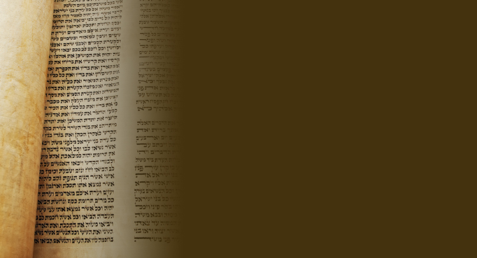 Rejoice with the Torah again and again