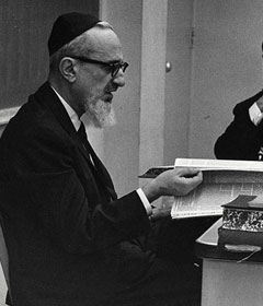 Rav Yosef Dov Soloveitchik